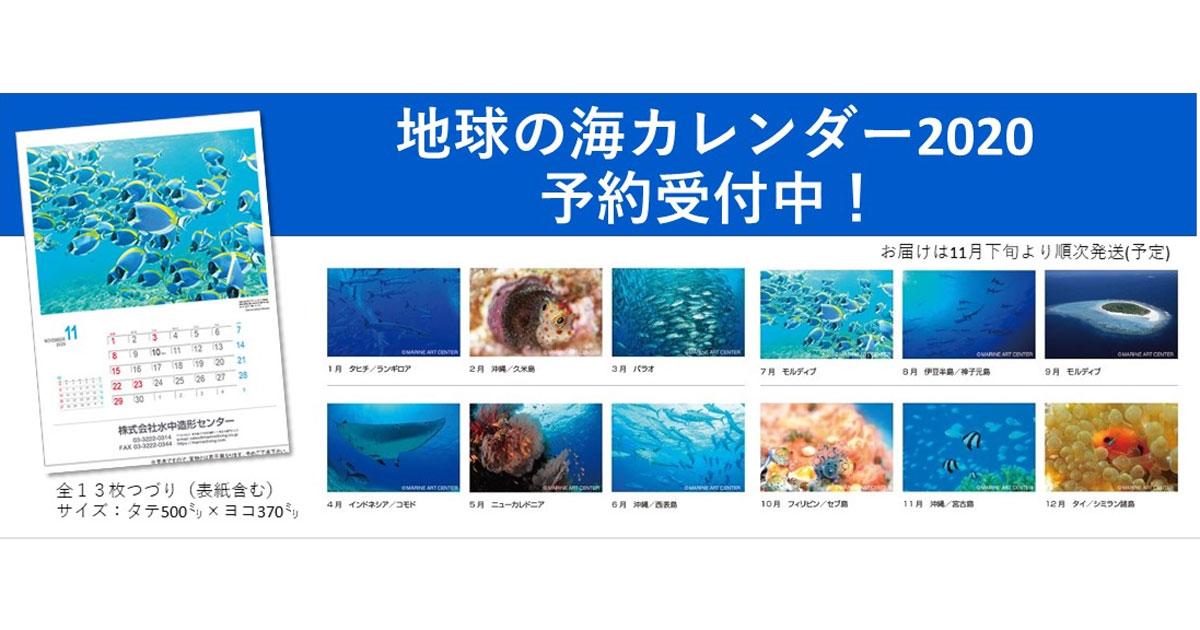 「地球の海カレンダー2020」予約受付開始!
