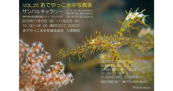 Vol.25あでやっこ水中写真展 神戸で開催!