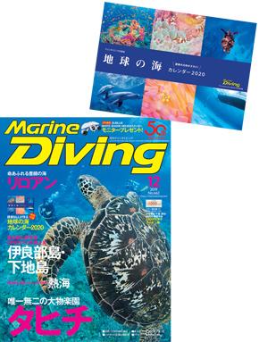 月刊『マリンダイビング』2019年12月号