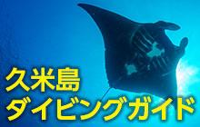 ブラックマンタにダイナミックな海中景観!久米島へのダイビング旅行を完璧ガイド