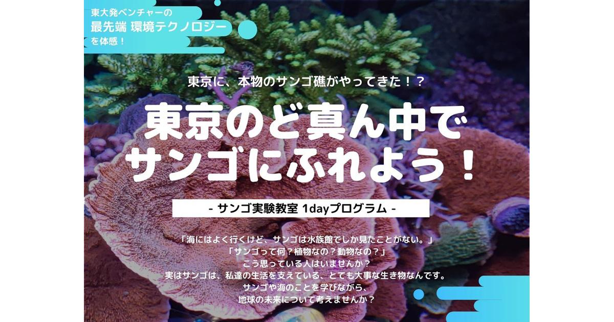 12/15は東京のど真ん中でサンゴにふれよう!