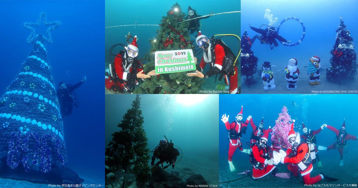 海でクリスマス! 海中クリスマスツリー情報