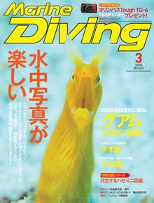 マリンダイビング2020年3月号(海ガール)