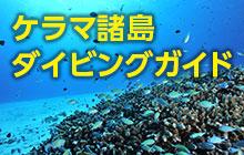 ケラマ諸島(渡嘉敷島・座間味島・阿嘉島・慶留間島)のダイビング情報まとめ