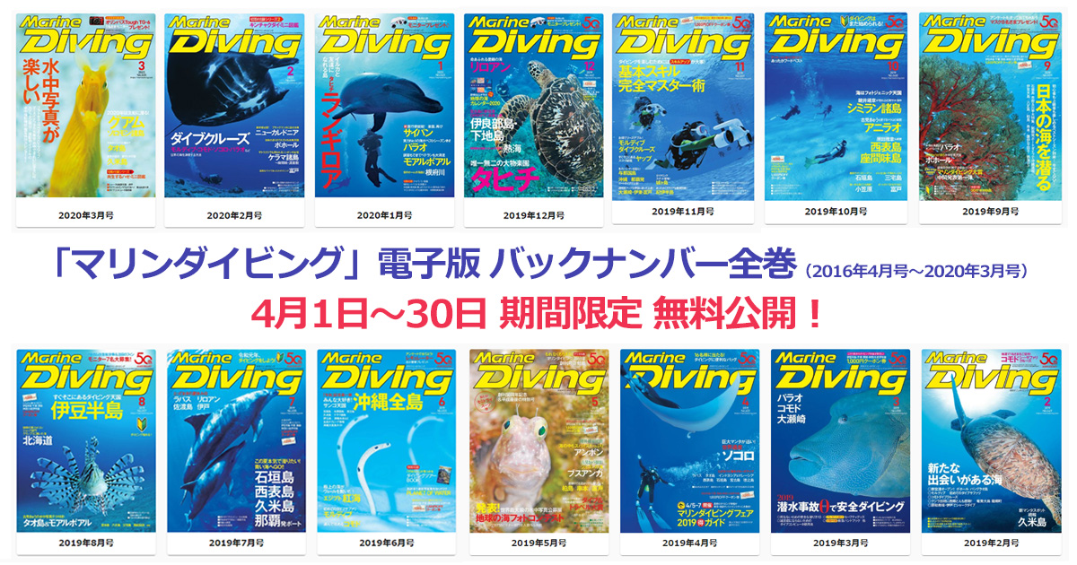 「マリンダイビング」電子版バックナンバー全巻無料公開!