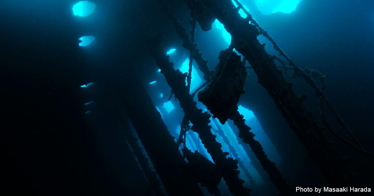 グアムでのレックダイビングはこんなに面白い