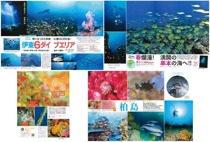 日本の海はやっぱりすごい!