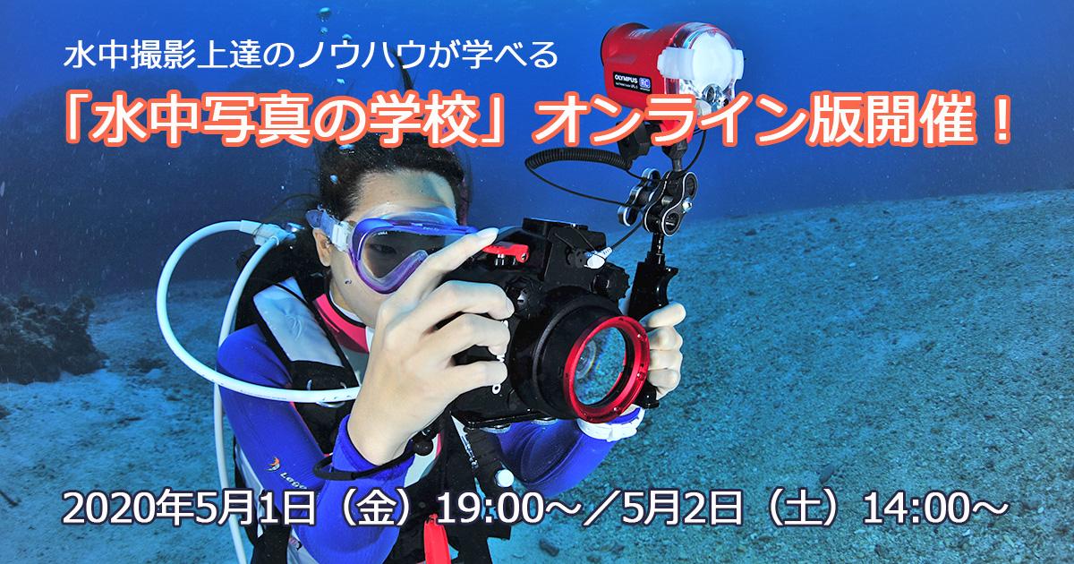 「水中写真の学校」オンライン版を開催!