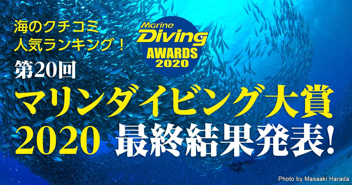 読者の投票による海の人気ランキング マリンダイビング大賞2020最終結果発表!