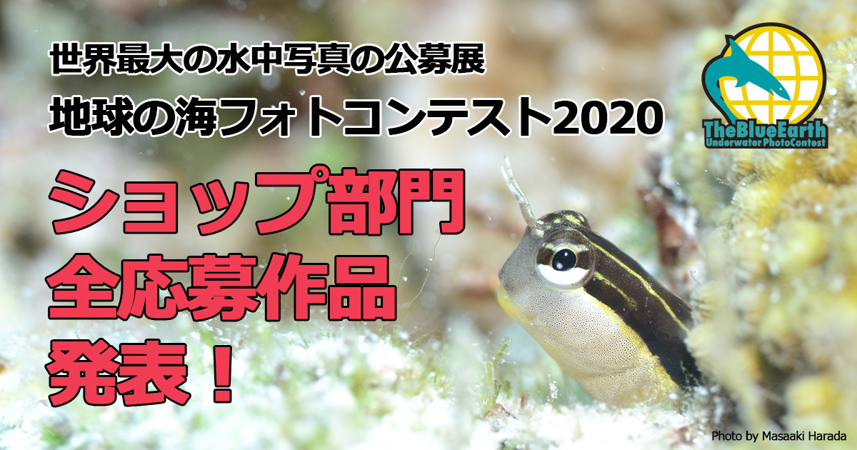 地球の海フォトコンテスト2020 ショップ部門 全応募作品発表!