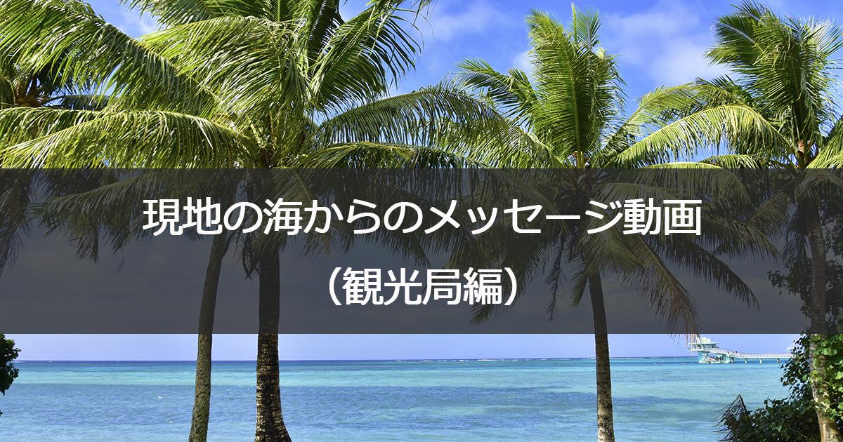 現地の海からのメッセージ動画(観光局編)