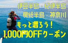 【ダイバー応援キャンペーン】1,000円OFFクーポンでもっと海を楽しもう!