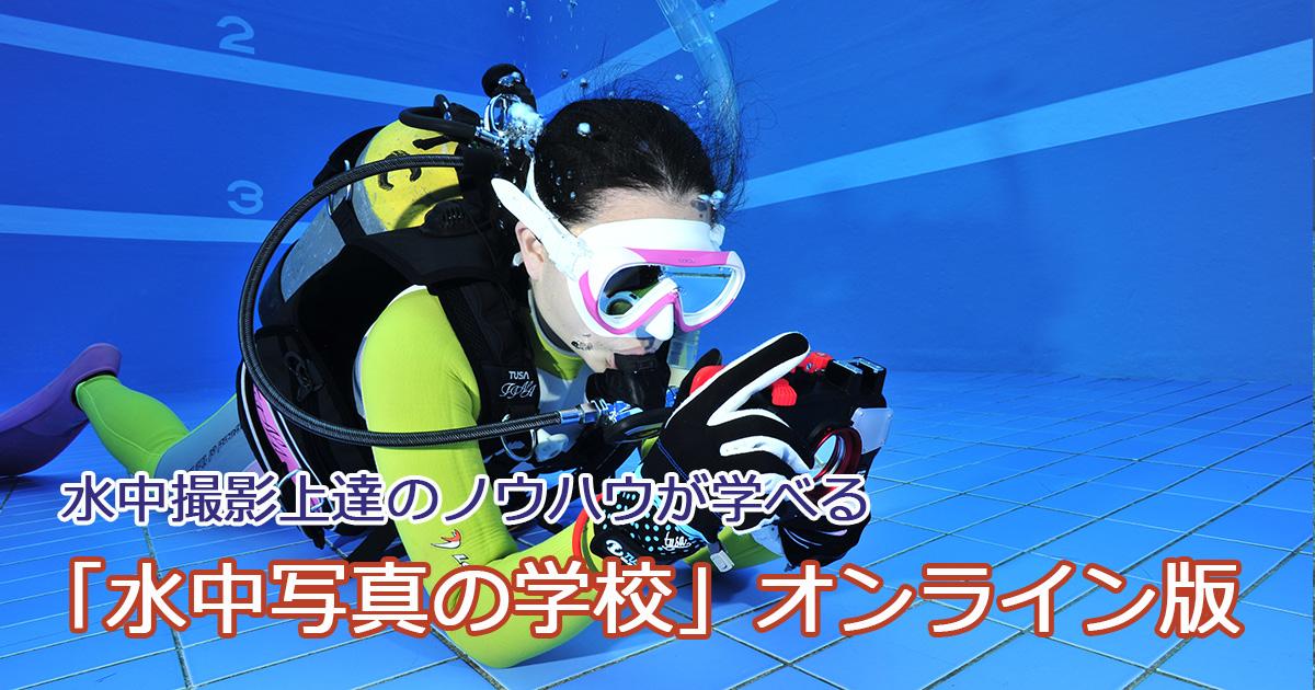 「水中写真の学校」オンライン版 受講生募集中!
