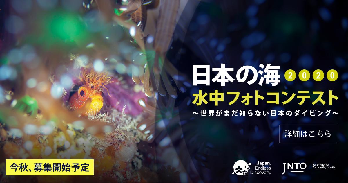 「日本の海 水中フォトコンテスト2020」 今秋開催予定