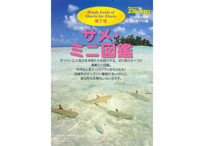 サメ・ミニ図鑑