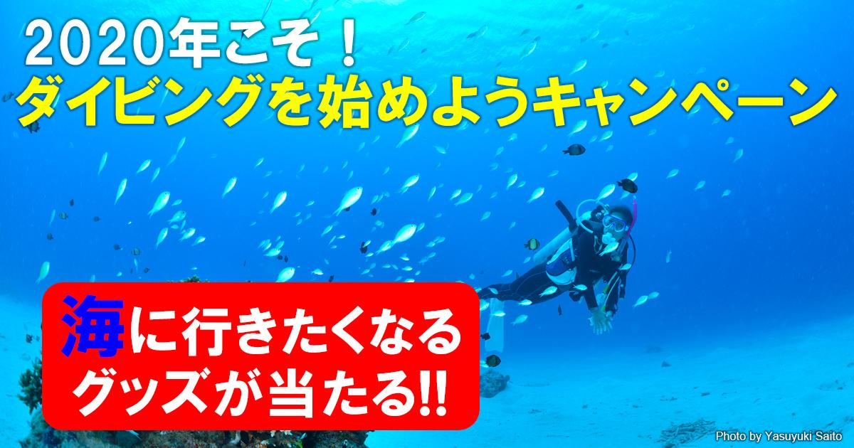 ダイビングを始めるなら今!海に行きたくなるグッズが当たるキャンペーンスタート
