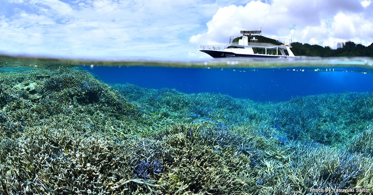 9月は海のクリーンアップ強化月間