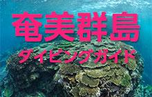 奄美群島(奄美大島・喜界島・徳之島・沖永良部島・与論島)ダイビングガイド