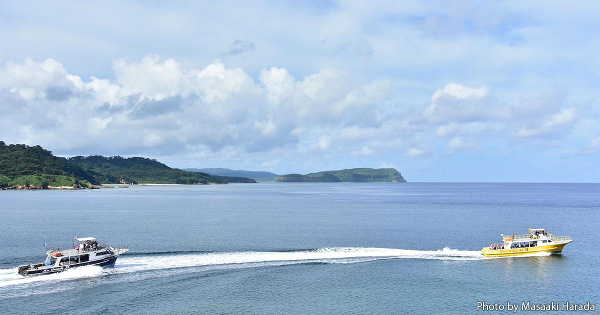 ジェットボートで縦横無尽に潜る西表島