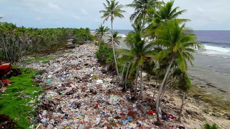 プラスチックごみに覆われた海岸
