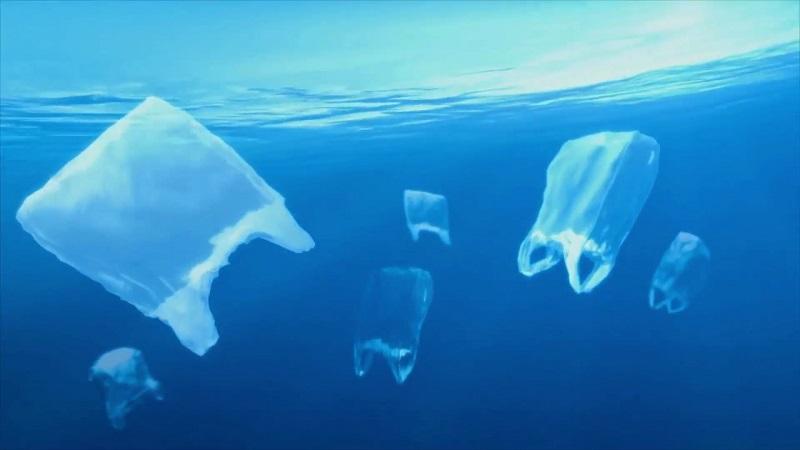 海に捨てられたプラスチックゴミの大半は海に沈んでしまいます