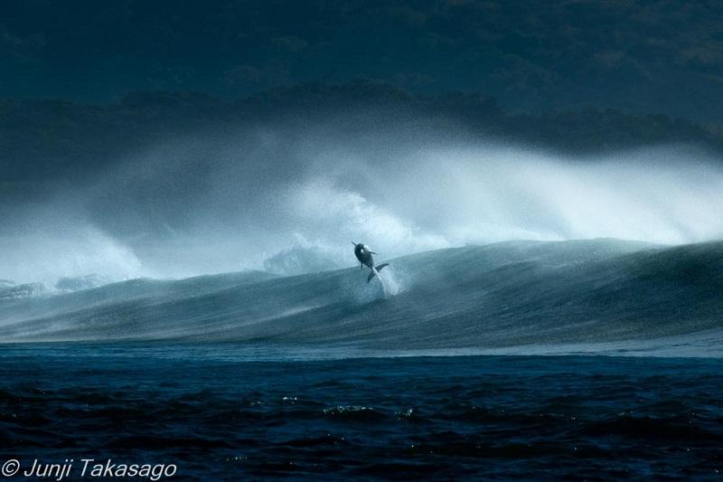身振り手振りで波の動きを表現しながら、撮影されたときの状況をお話くださいました