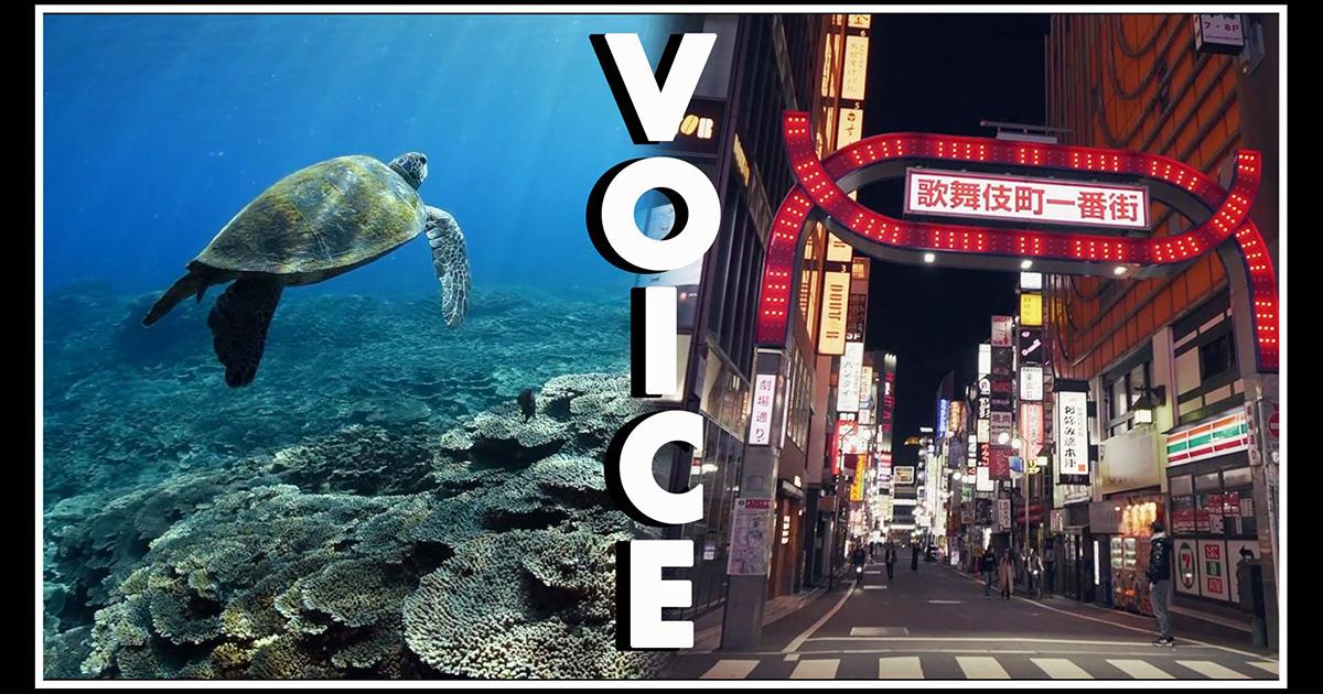 自然写真家・関戸紀倫さん撮影の最新映像「VOICE」公開!
