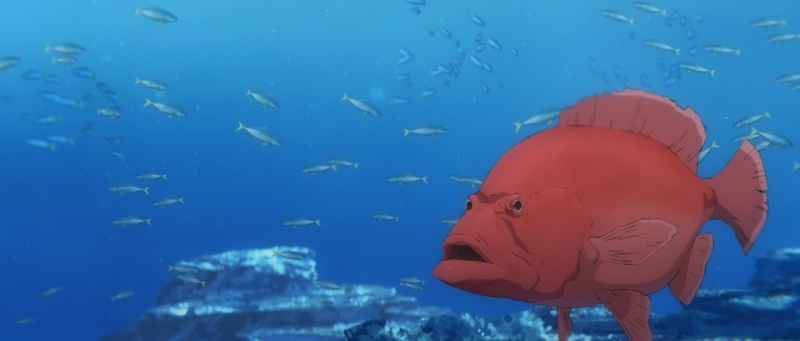 この魚は……?