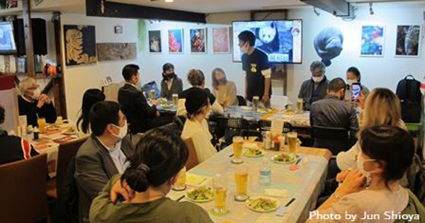 ホホジロザメ@永田町オーシャン 写真展も開催