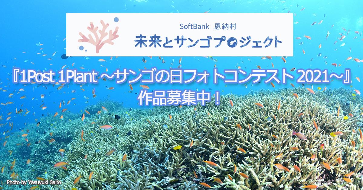 「サンゴの日フォトコンテスト」作品募集中!