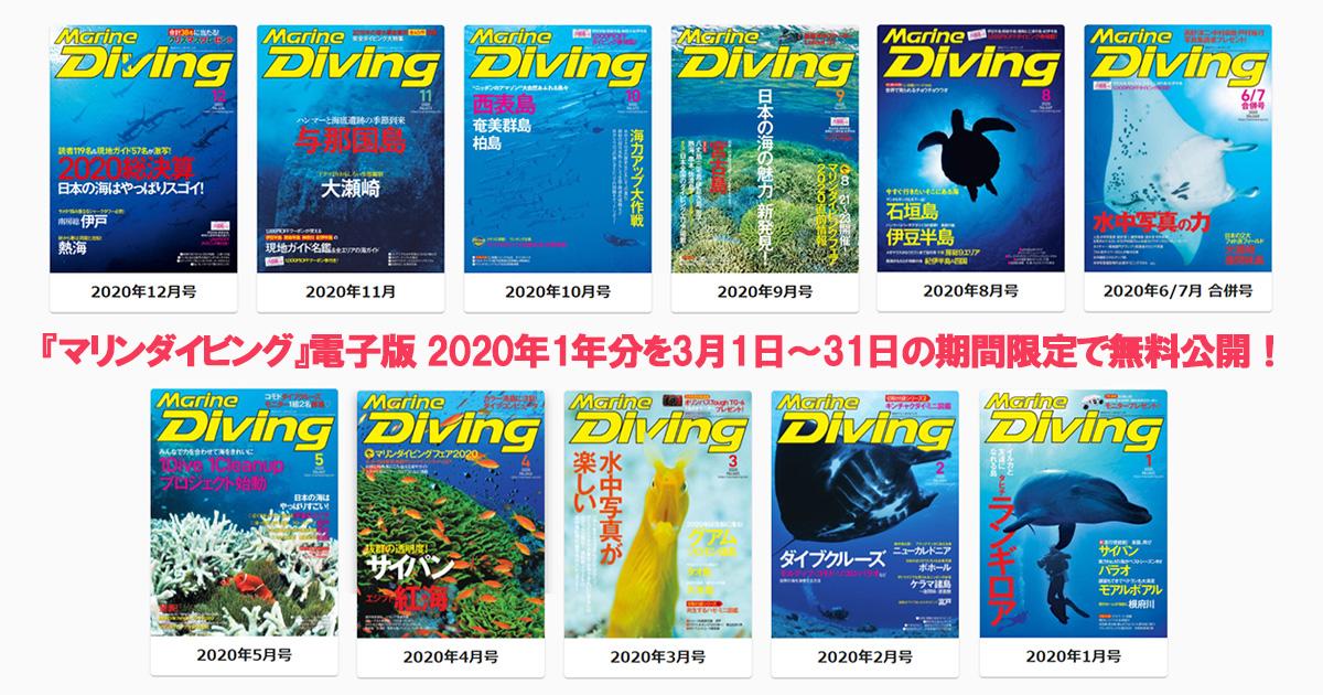 『マリンダイビング』電子版 2020年の1年分を無料公開! 2021年3月1日~31日の期間限定