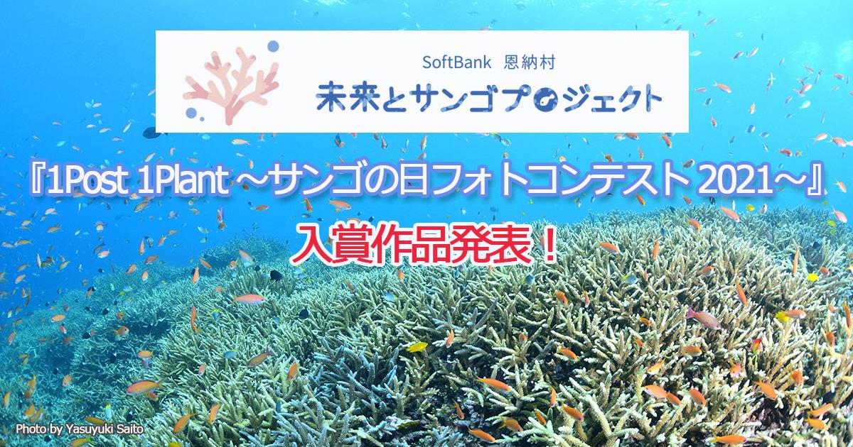 『1Post 1Plant ~サンゴの日フォトコンテスト 2021~』入賞作品発表!