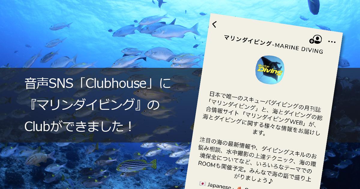 音声SNS「Clubhouse」に『マリンダイビング』のClubができました!