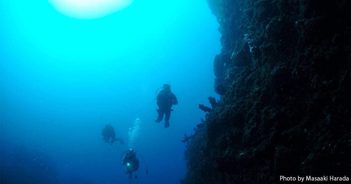 地形、ウミウシ、大物、海中温泉!浮島・堂ヶ島ダイビング基本情報
