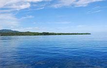 インドネシア・リクパンのダイビング旅行ガイド
