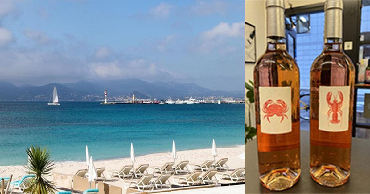 海を感じるワインSelection Vol.2 地中海の恵みを存分に受けたワイン「マーレ・ノストラム」