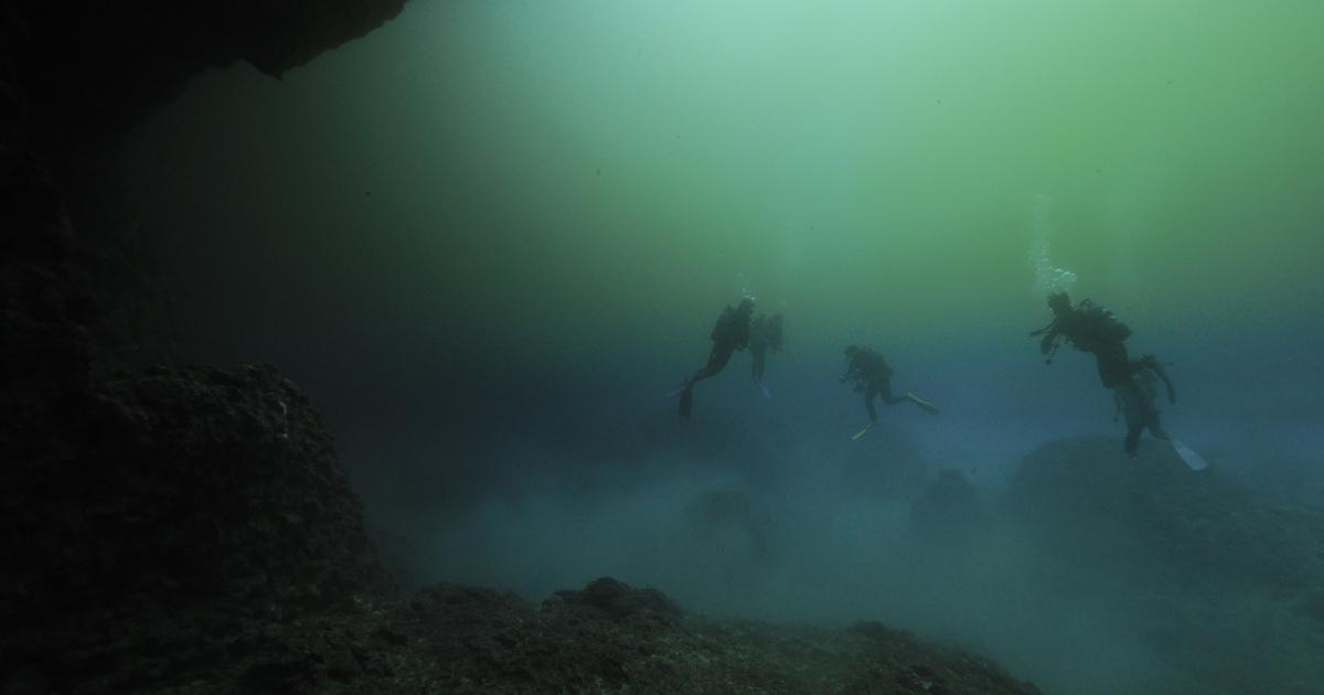 「宮古島水中フォトコンテスト2021」作品募集開始